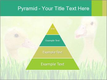 0000062807 PowerPoint Templates - Slide 30
