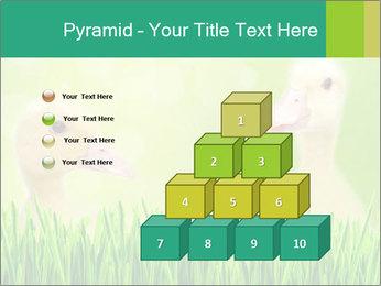 0000062807 PowerPoint Templates - Slide 31