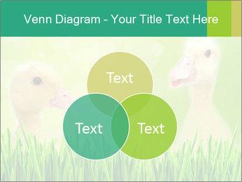 0000062807 PowerPoint Templates - Slide 33