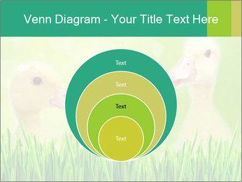 0000062807 PowerPoint Templates - Slide 34