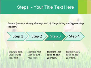 0000062807 PowerPoint Templates - Slide 4