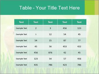 0000062807 PowerPoint Templates - Slide 55