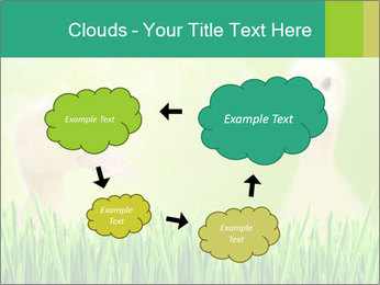0000062807 PowerPoint Templates - Slide 72