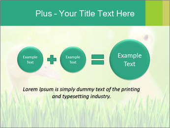 0000062807 PowerPoint Templates - Slide 75