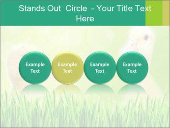 0000062807 PowerPoint Templates - Slide 76