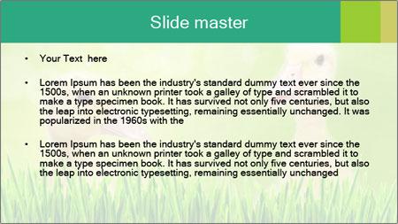0000062807 PowerPoint Template - Slide 2