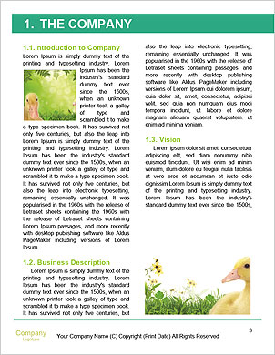 0000062807 Word Template - Page 3