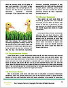 0000062807 Word Template - Page 4