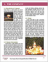 0000062815 Word Template - Page 3