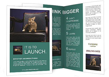 0000062826 Brochure Template
