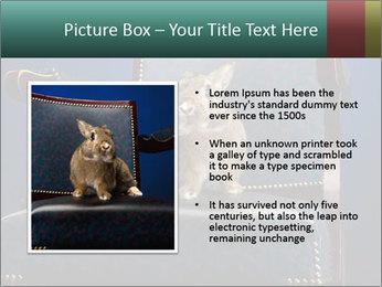 0000062826 PowerPoint Template - Slide 13