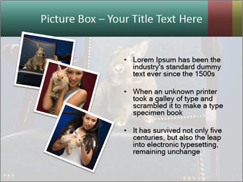 0000062826 PowerPoint Template - Slide 17