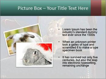 0000062826 PowerPoint Template - Slide 20
