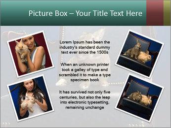0000062826 PowerPoint Template - Slide 24