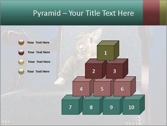 0000062826 PowerPoint Template - Slide 31