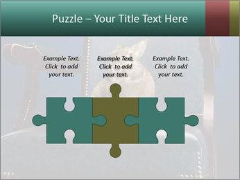 0000062826 PowerPoint Template - Slide 42