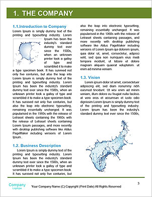0000062831 Word Template - Page 3