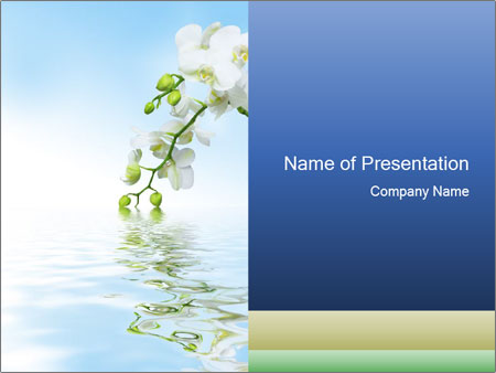 0000062836 PowerPoint Template