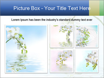 0000062836 PowerPoint Template - Slide 19
