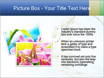 0000062836 PowerPoint Template - Slide 20