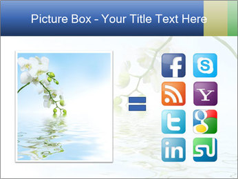 0000062836 PowerPoint Template - Slide 21
