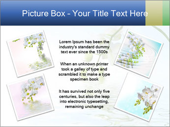 0000062836 PowerPoint Template - Slide 24
