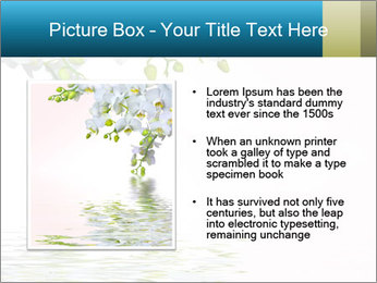 0000062837 PowerPoint Template - Slide 13