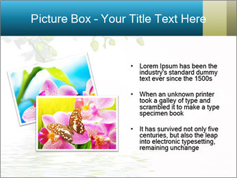 0000062837 PowerPoint Template - Slide 20
