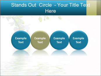 0000062837 PowerPoint Template - Slide 76