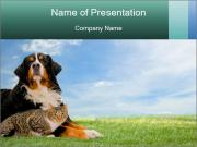 0000062839 PowerPoint Templates