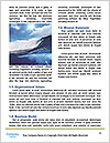 0000062841 Word Templates - Page 4