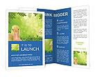 0000062843 Brochure Templates