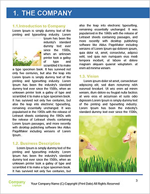 0000062843 Word Template - Page 3