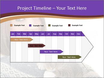 0000062844 PowerPoint Templates - Slide 25