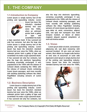 0000062854 Word Template - Page 3