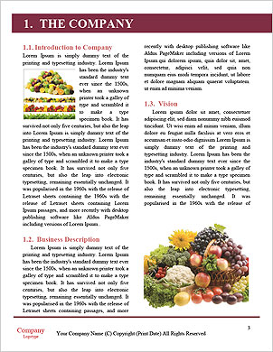 0000062855 Word Template - Page 3