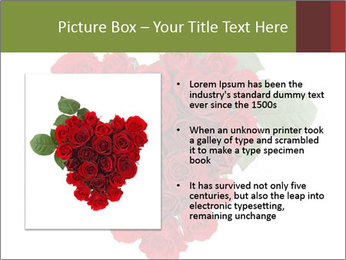 0000062864 PowerPoint Templates - Slide 13