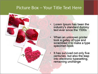 0000062864 PowerPoint Templates - Slide 17