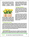 0000062878 Word Template - Page 4