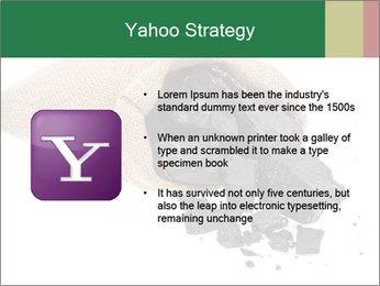 0000062884 PowerPoint Template - Slide 11