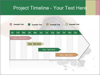 0000062884 PowerPoint Template - Slide 25