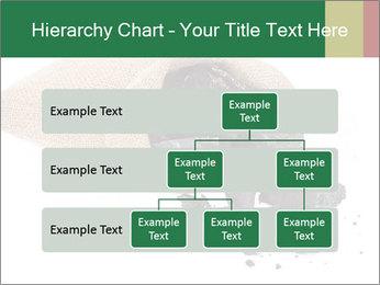 0000062884 PowerPoint Template - Slide 67