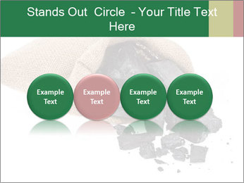 0000062884 PowerPoint Template - Slide 76