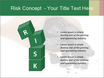 0000062884 PowerPoint Template - Slide 81