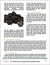 0000062884 Word Templates - Page 4