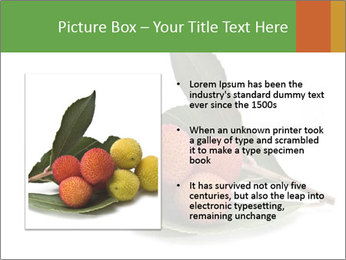 0000062889 PowerPoint Templates - Slide 13