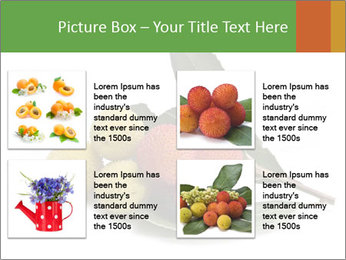 0000062889 PowerPoint Templates - Slide 14
