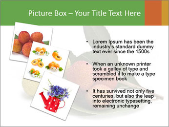 0000062889 PowerPoint Templates - Slide 17