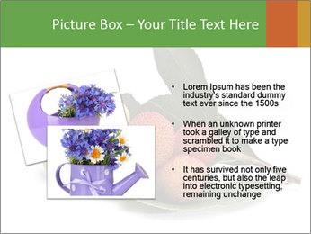 0000062889 PowerPoint Templates - Slide 20
