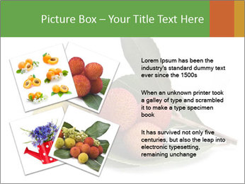 0000062889 PowerPoint Templates - Slide 23